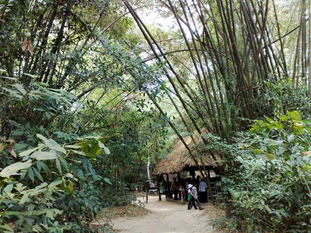 U Minh Thuong National Park (Kien Giang) 3 days 2 nights